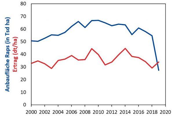 Abbildung 1: Hessische Winterraps-Anbaufläche und Rapsertrag; Vorläufige Daten für 2019 beruhen auf Schätzungen (Statistisches Landesamt)