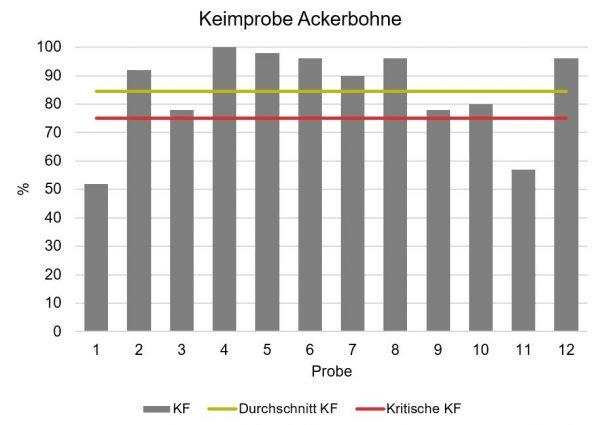 Die Graphik stellt die Keimfähigkeit von 12 Ackerbohnenproben in Prozent dar